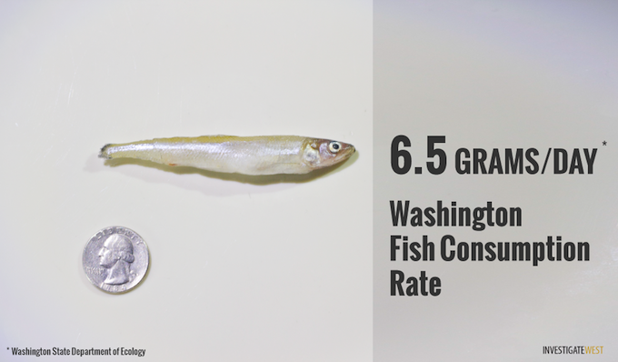 The current estimate of how much fish people eat in Washington State, a key criteria for settingwater quality standards, is less than one-tenth the figure used by Oregon.Credit: Jason Alcorn
