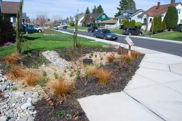 This large rain garden in Everett's Lombard neighborhood helped to end disastrous flooding in the area.