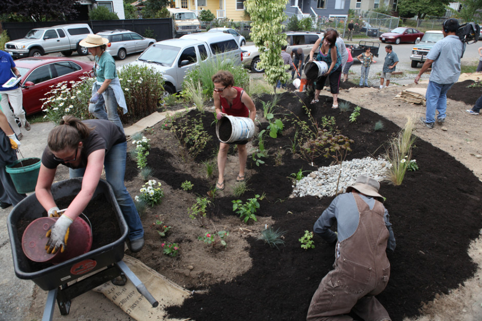 If Green Roofs And Rain Gardens Are So Great, Why Aren't There More?
