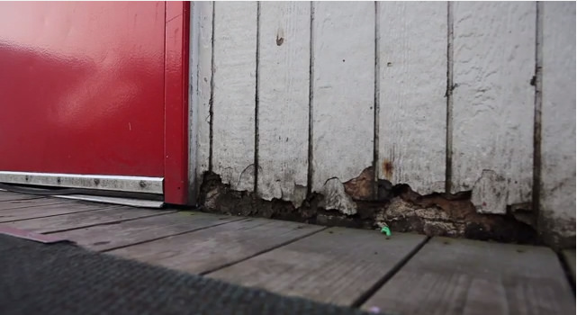 The siding rots off a portable classroom in Bellingham, Washington. Mold grows in the siding.
