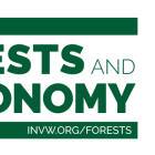 Forests and the Economy