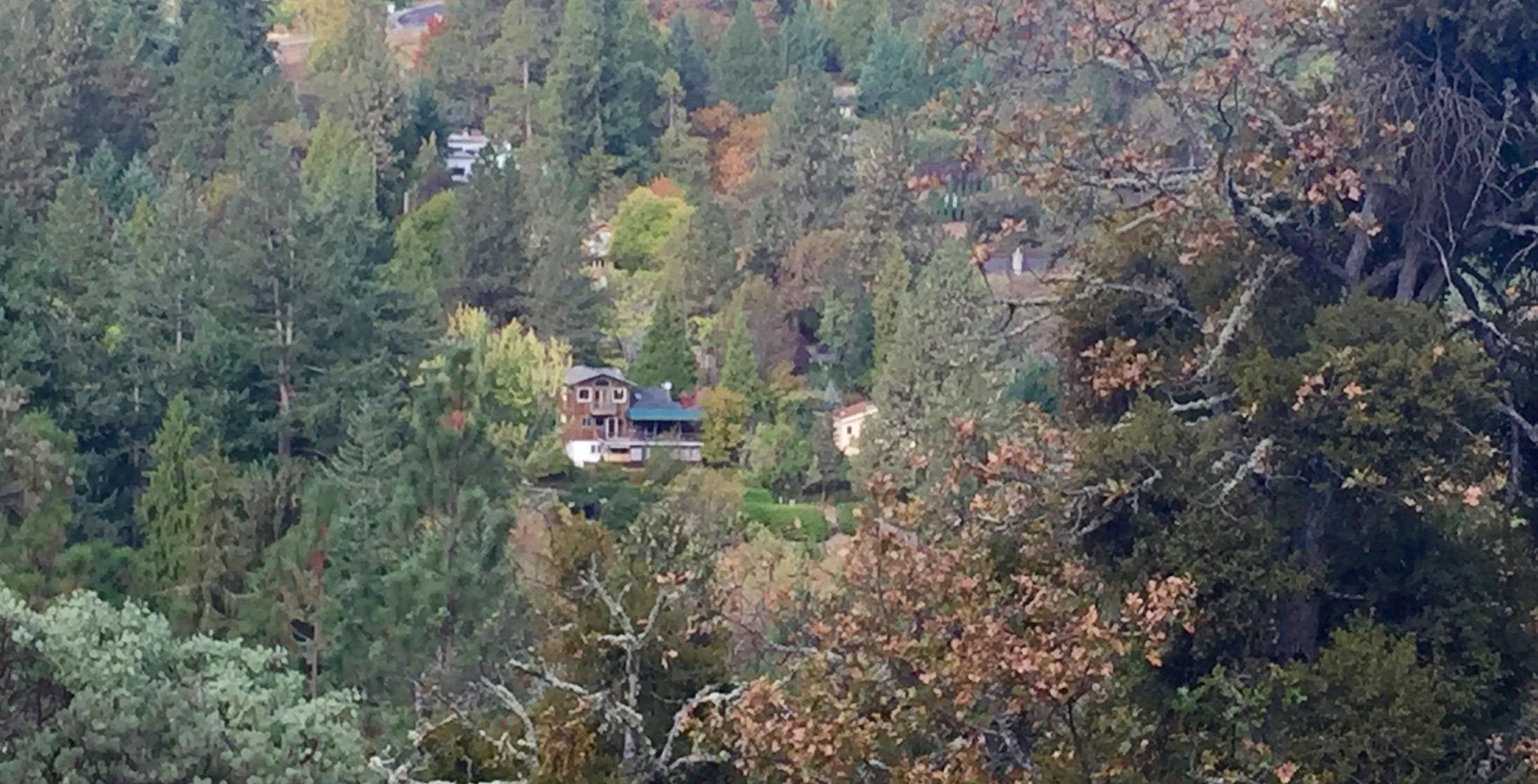 The wildfire conundrum: building in the woods