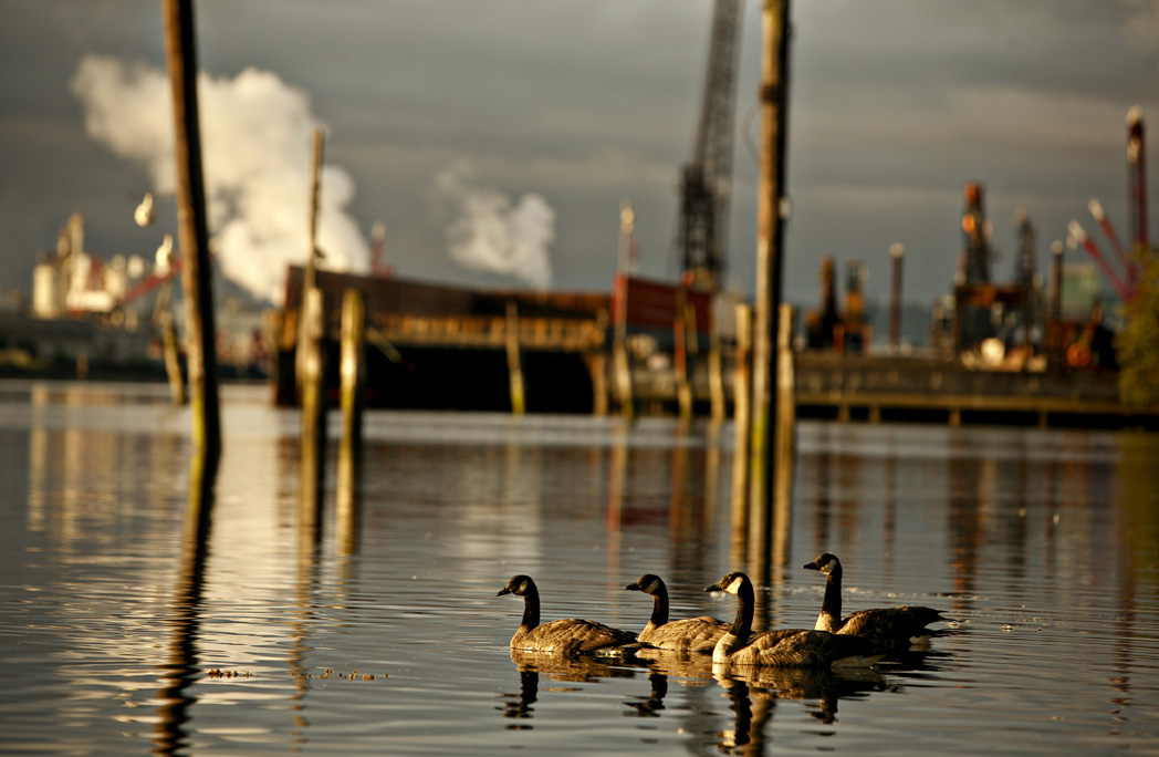 Big Oil aims to kill tax increase to fund toxic site cleanups