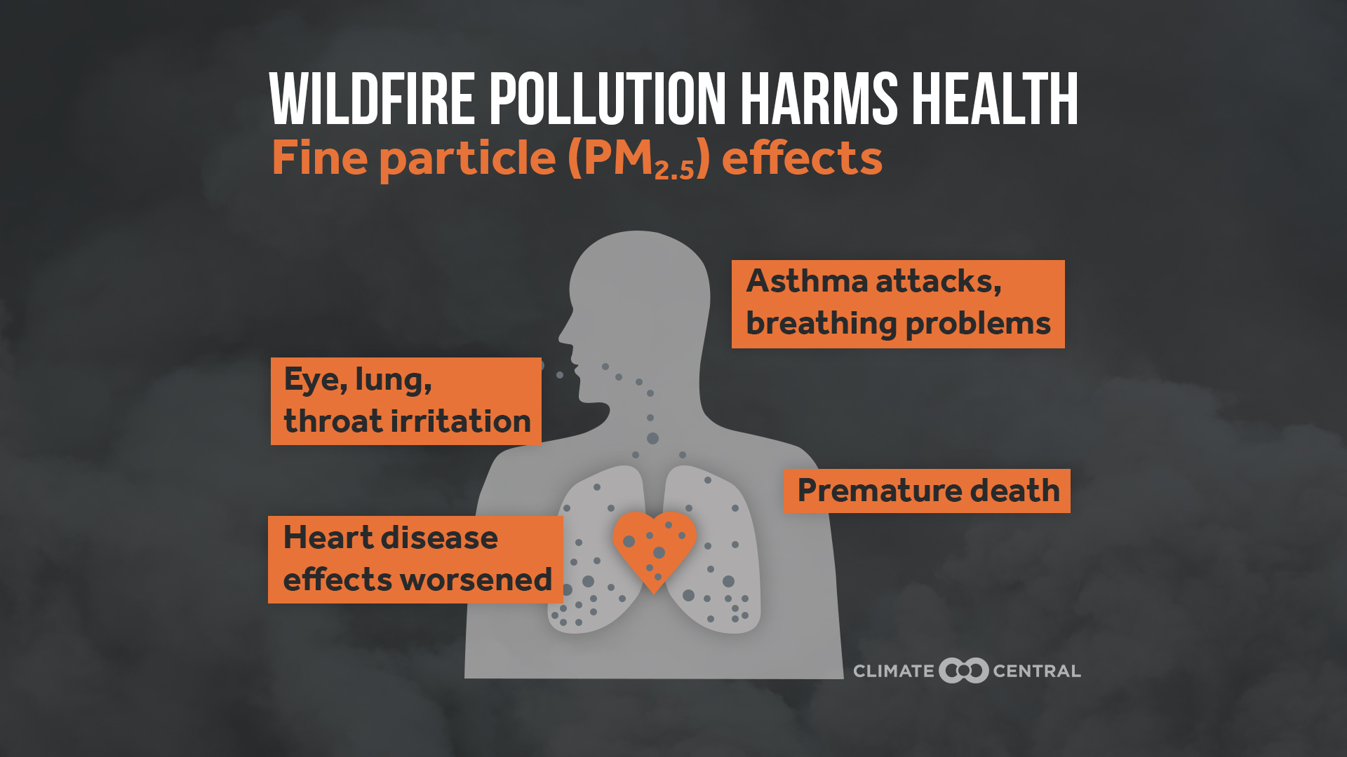 How to Protect Yourself from Wildfire Smoke