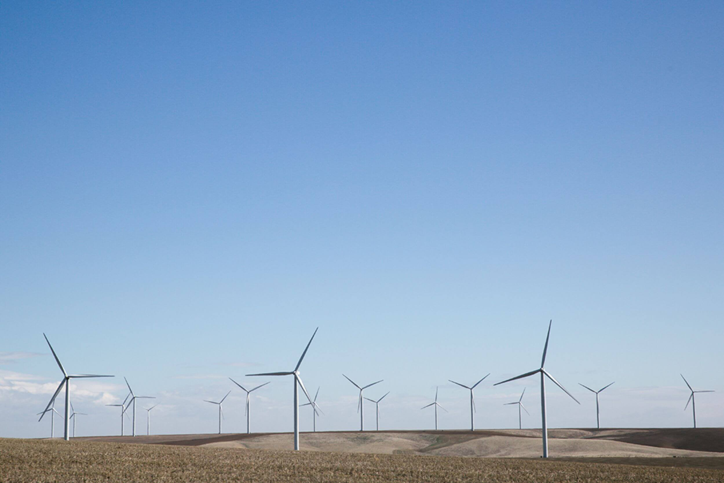 A horizon populated by large windmills, underneath a vast blue sky.