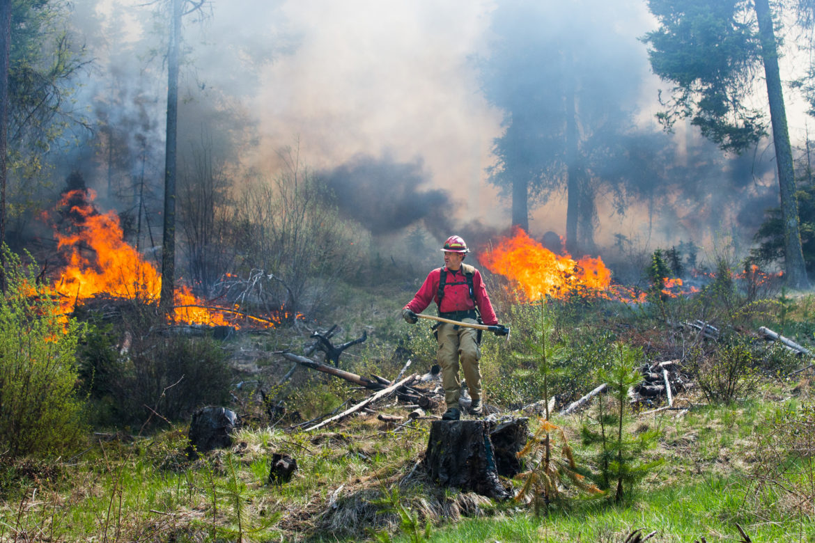 Hundreds of firefighters. 20 bulldozers. Intentional burns: Inside Washington's $328M push to break cycle of disastrous fires